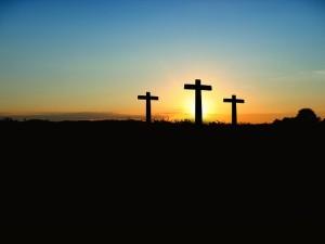 Wiara i Kościól - jak mają się do tego książki katolickie?