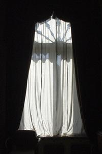window-1235159