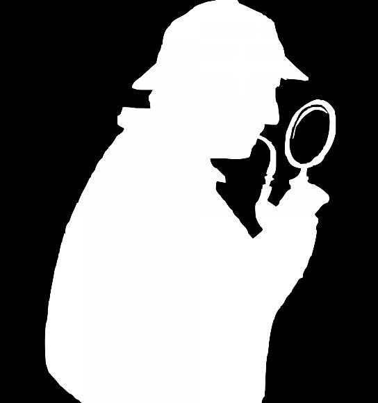 profesjonalny-detektyw