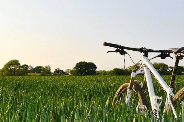rowery mtb w trasie